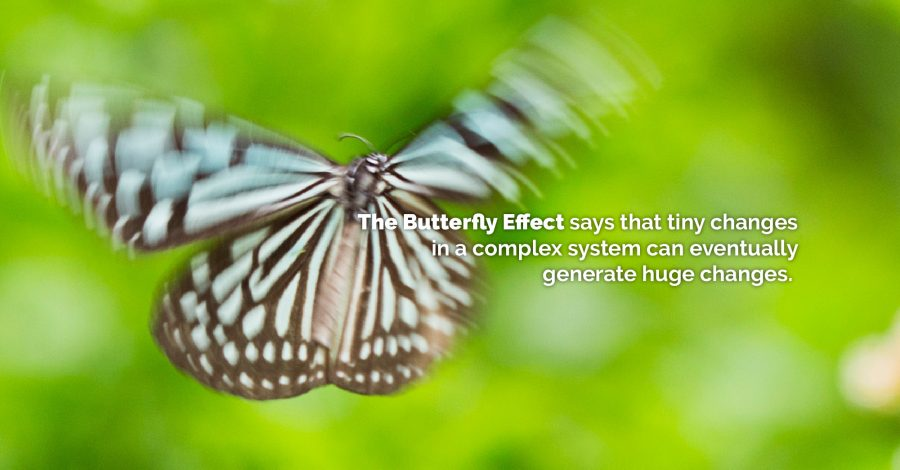 The Butterfly Effect: Guidance for Families